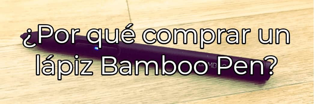 lapiz bamboo review